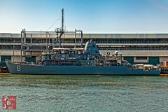 USS Scout (MCM-8)