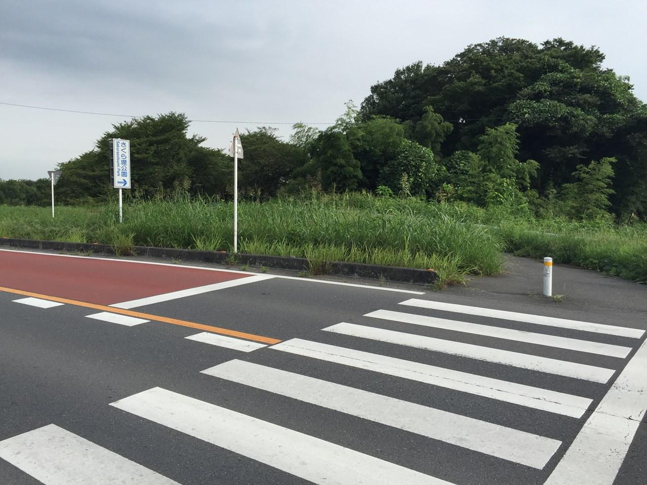 20170826_Arakawa Long Run (18)
