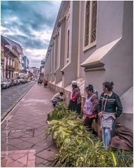 Serie #people 01 #Cuenca #Ecuador #AllYouNeedIsEcuador #iPhoneonly #ProyectoEcuador2017 #street
