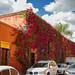 Bu Burritos | San Miguel por wegstudio