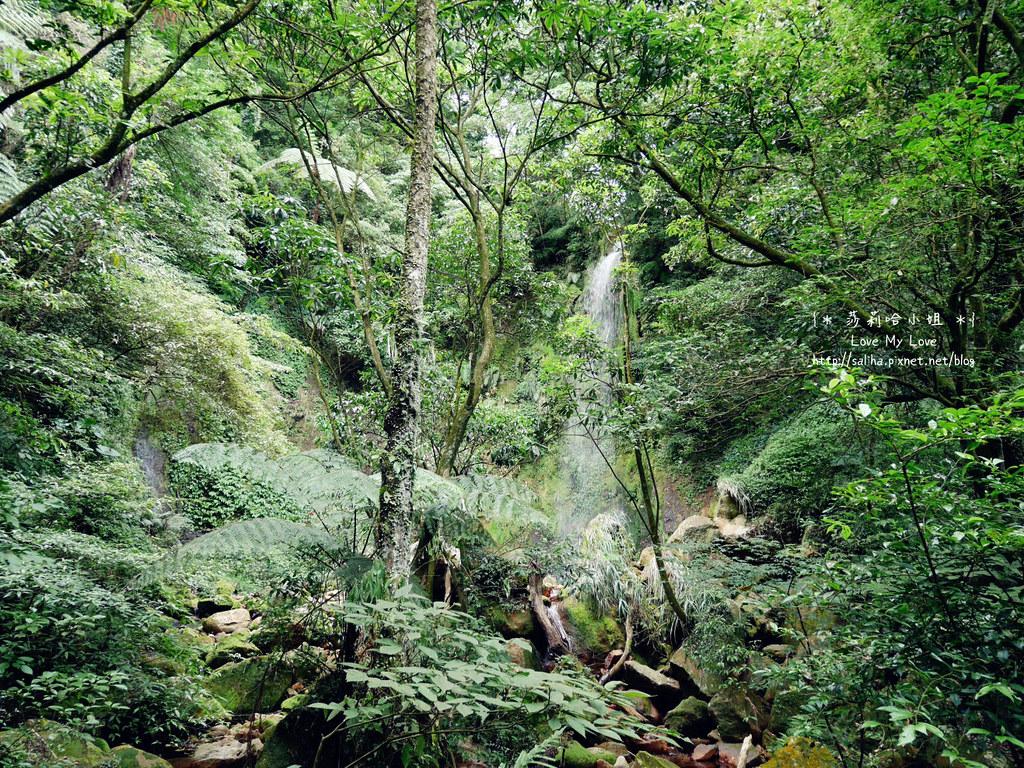 台北一日遊爬山踏青景點行程推薦 (1)