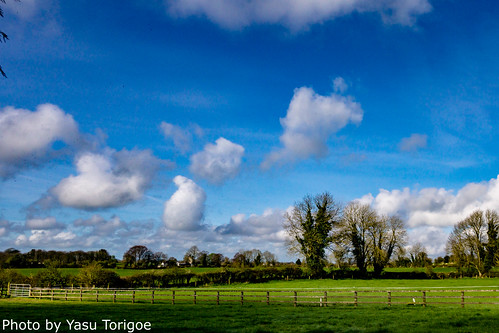 bungalowfarmhousebbguesthousecokilkennyireland clomantagh countykilkenny ireland ie