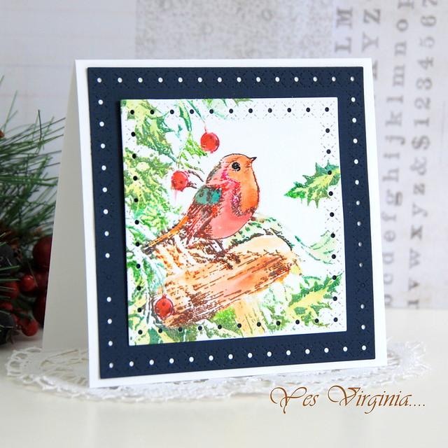 bird (square card)