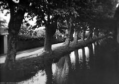 Mirepoix, Ariège (Canal des Moulins de Mirepoix) Korona View 5x7, Fomapan 400