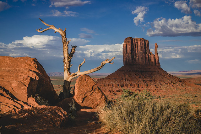 Left Mitten Monument Valley, Nikon D5300, Tamron SP AF 17-50mm f/2.8 XR Di II VC LD Aspherical (IF) (B005)