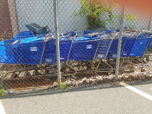 Abandoned Pathmark carts