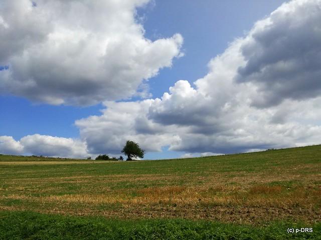 Bernstein-Planetenwanderweg, Burg, Fußreflexzonenweg