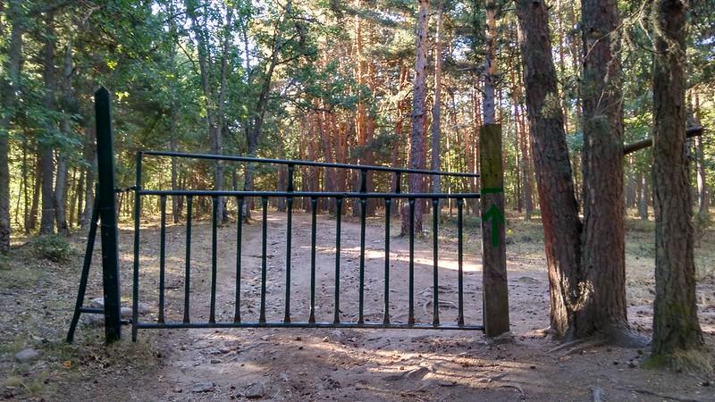 Cruzamos la valla, para continuar por el camino.