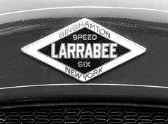Larrabee Seed Six Hood Ornament