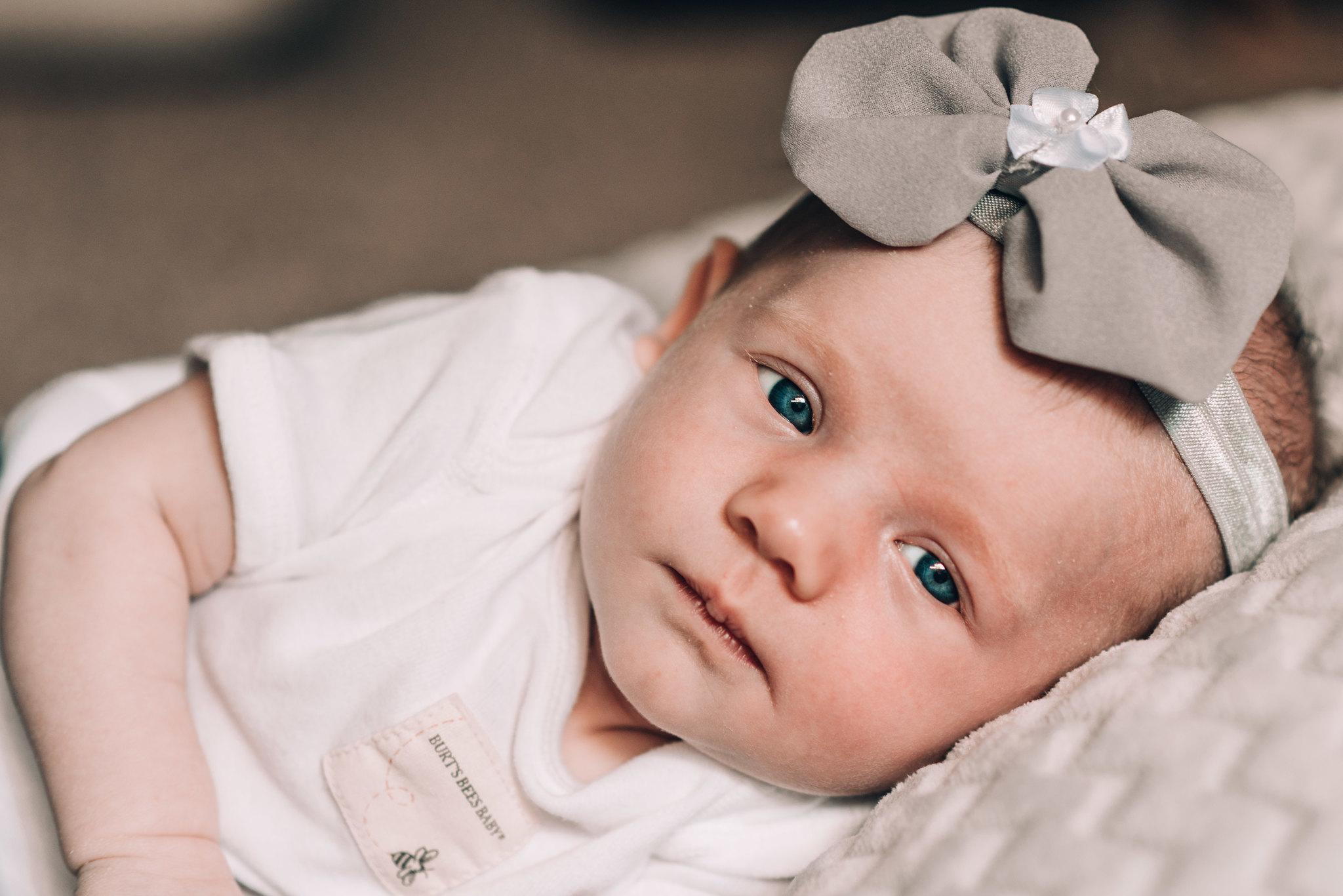 Bailey Rae // 2017 Newborn