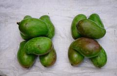 Mango fruits at rural market