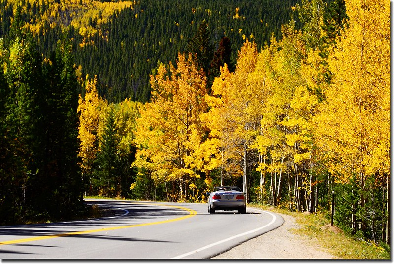 Fall colors, Mount Evans Scenic Byway, Colorado (54)