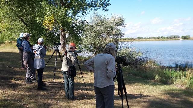 birders birding Walgren Lake