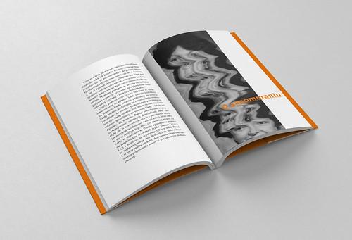 Book / Brochure - B6 -  Mockup