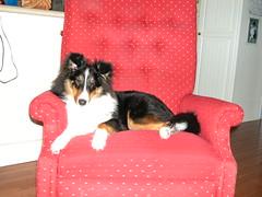 Brynn 02.25.2003 16