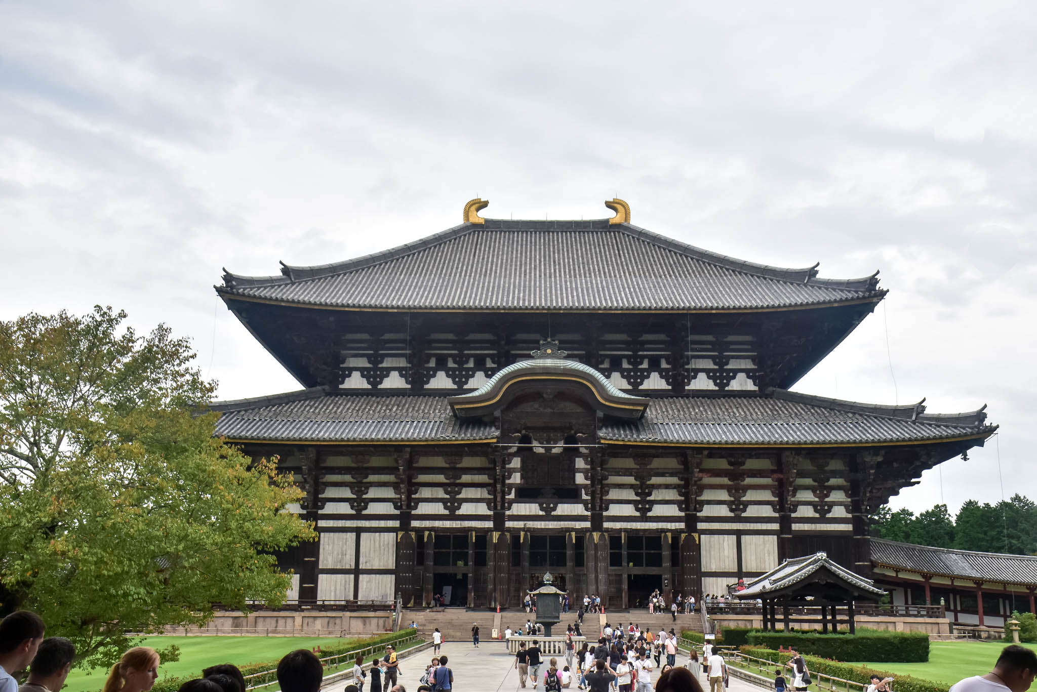 nara best tourist attractions