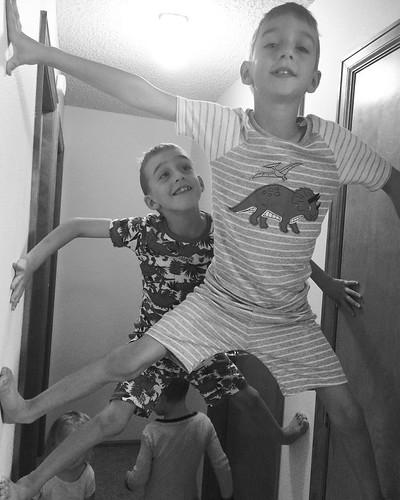 Spiderboys