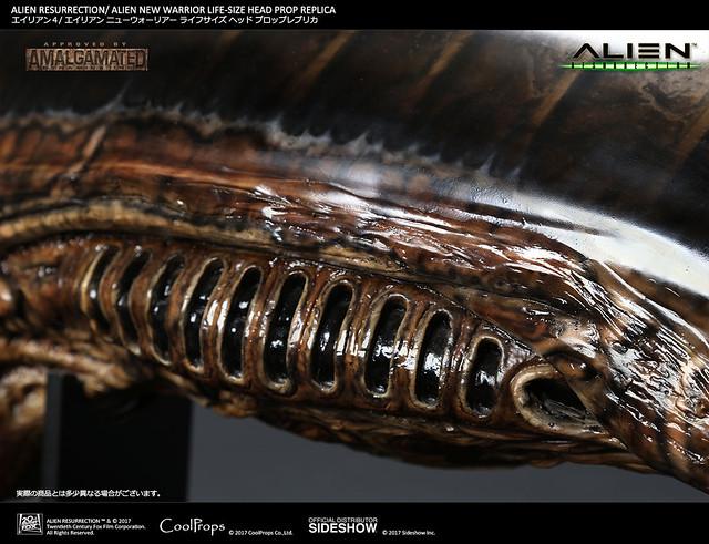 CoolProps 異形4:浴火重生【新戰士異形】Alien Resurrection Alien New Warrior 1:1 比例 頭像道具複製品