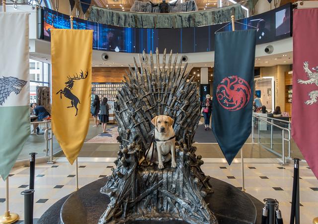 Buzz on the Iron Throne