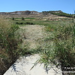 Arreglo del camino interior. Lagunas de La Guardia (Toledo)