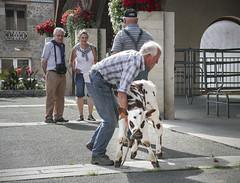 Cattle Market at Briouze