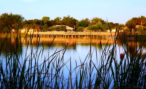 lakeatsunset reedcanallake reedcanalpark southdaytonaflorida sunset grass bridge lake water scenic trees landscape