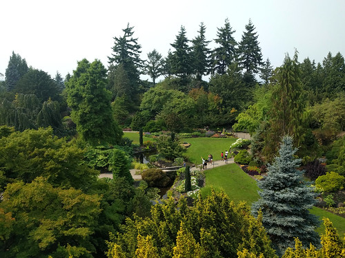 Greenery at Queen Elizabeth Park