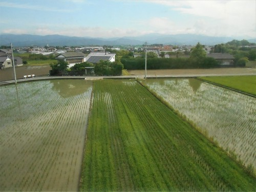 jp-Kochi-Nahari-train (4)