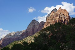 Zion National Park (12)