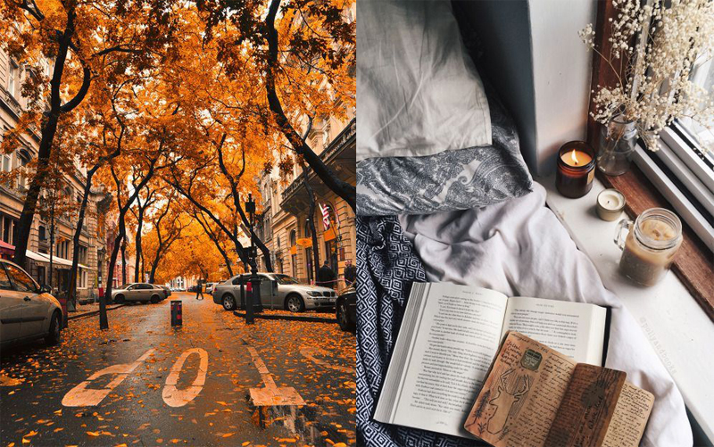 Autumn1inspire