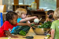 2017 - September - HDFS - Fresh Vegetables in the Child Development Lab School-84.jpg
