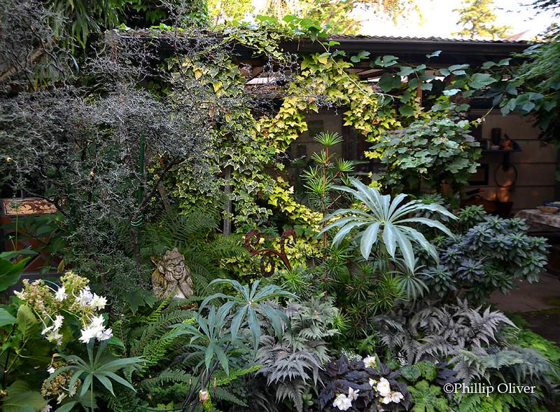 Open Gardens: Nancy Goldman and Deborah Myers