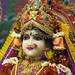 Darshan from IMG_4532