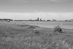The Thames Below Erith