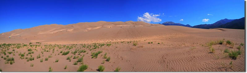 Panorama of Great Sand Dunes National Park 1
