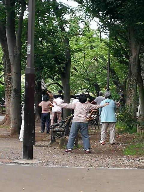 Morning tai chi in Tokyos Inkoshira Park