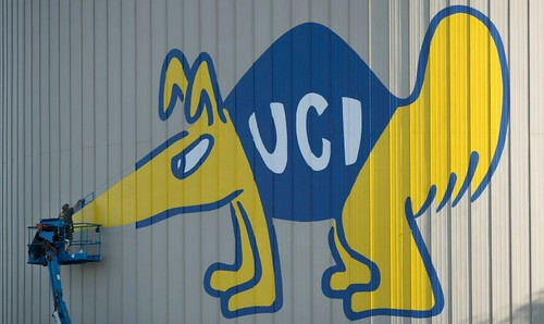 UCI Anteater Painting