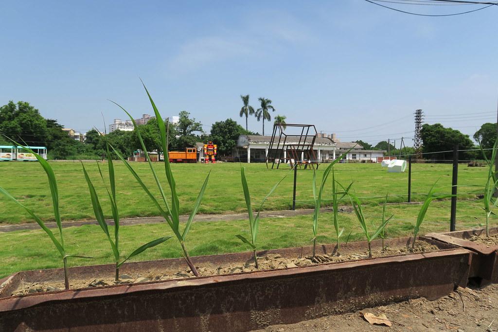 新營糖廠地景文化節 (11)