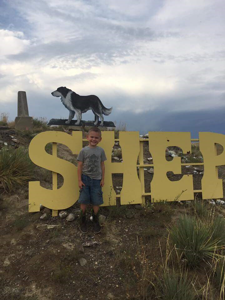 Schemper 2017 - Montana Harvest