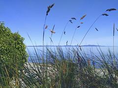 Parker Park Beach