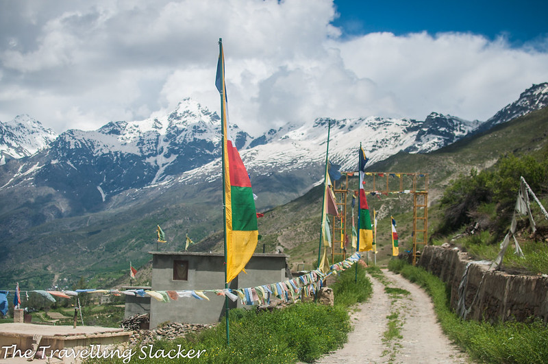 Kardang Monastery (24)