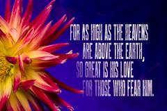 PSALM10311