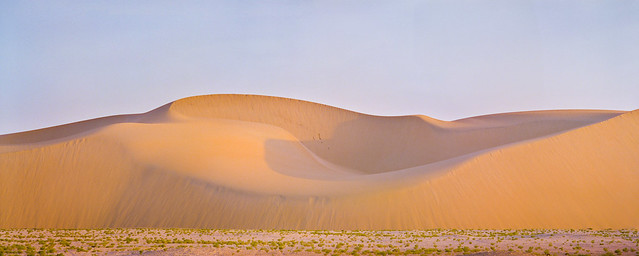 Swoopy Dune Pano
