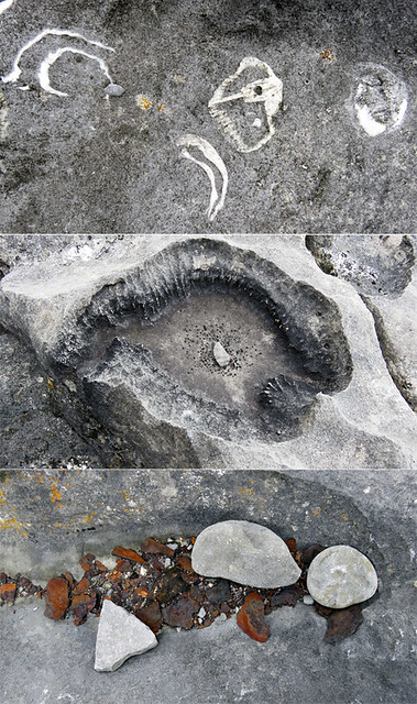 Collage of Aran Island rock textures with fossil shells and rust