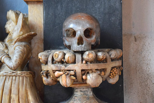 skull with a cage of fruits
