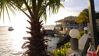 Buddy's Reef( Bonaire)