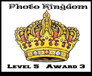 Photo Kingdom Leve 5