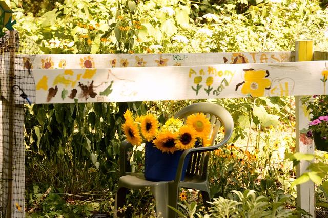 sunflowers, Nikon D3200, AF-S DX Zoom-Nikkor 55-200mm f/4-5.6G ED