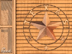 hive // the lone star | group gift @ mainstore