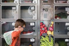 Biological fruits and vegetables dispenser, Montolieu, Occitanie, France